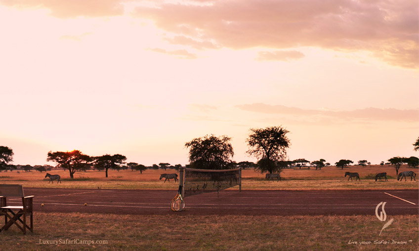Fancy a game of Tennis in Serengeti: LuxurySafariCamps.com