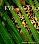 Mombo Camp: Eye of the Leopard