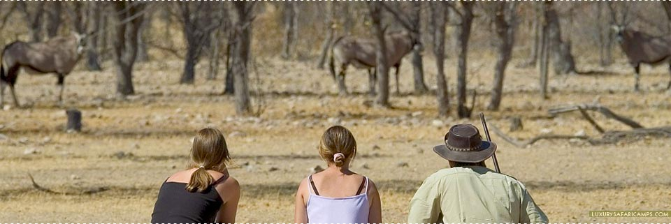 Little Ongava Camp - Game Viewing at Etosha