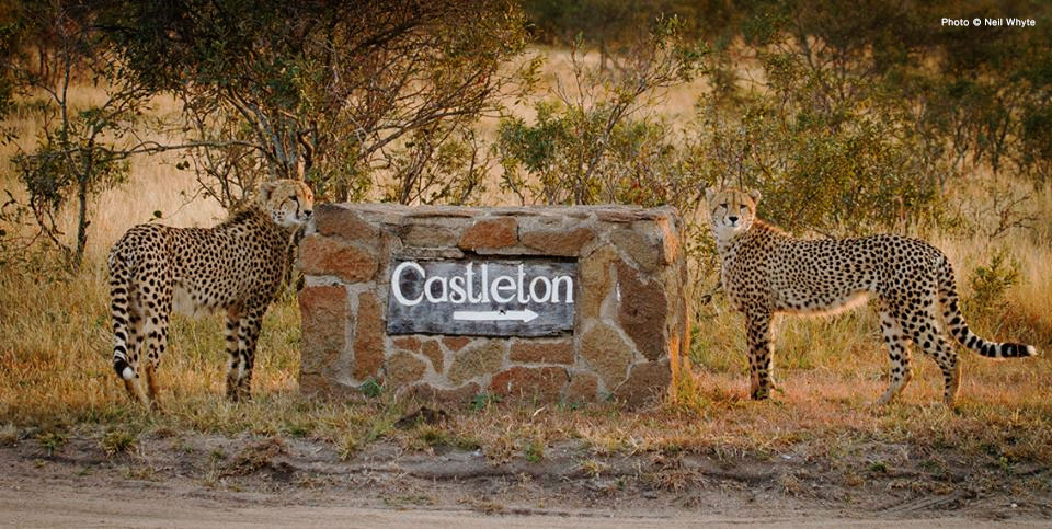 Singita Castleton Directions