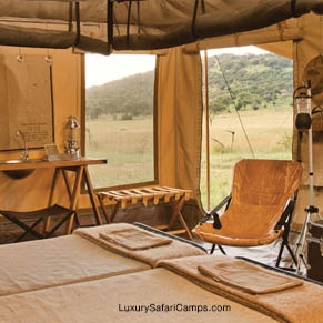 Mobile Safari Glamping!