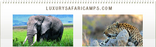 Luxury Safari Camps Calendar