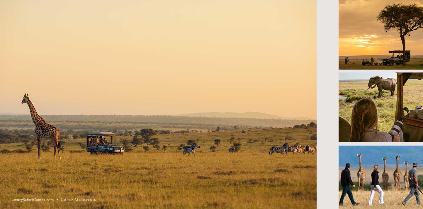 Private Safari Guides - Professional Guides to lead your safari