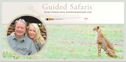 Safari Stories